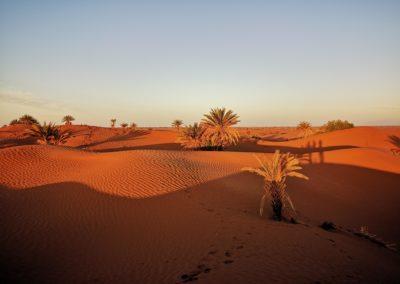 Dunes M'Hamid coucher de soleil
