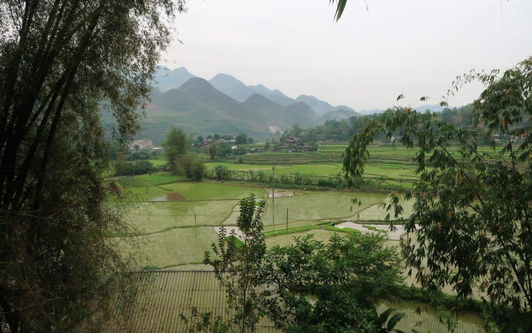Le nord du Vietnam : loop en motorbike