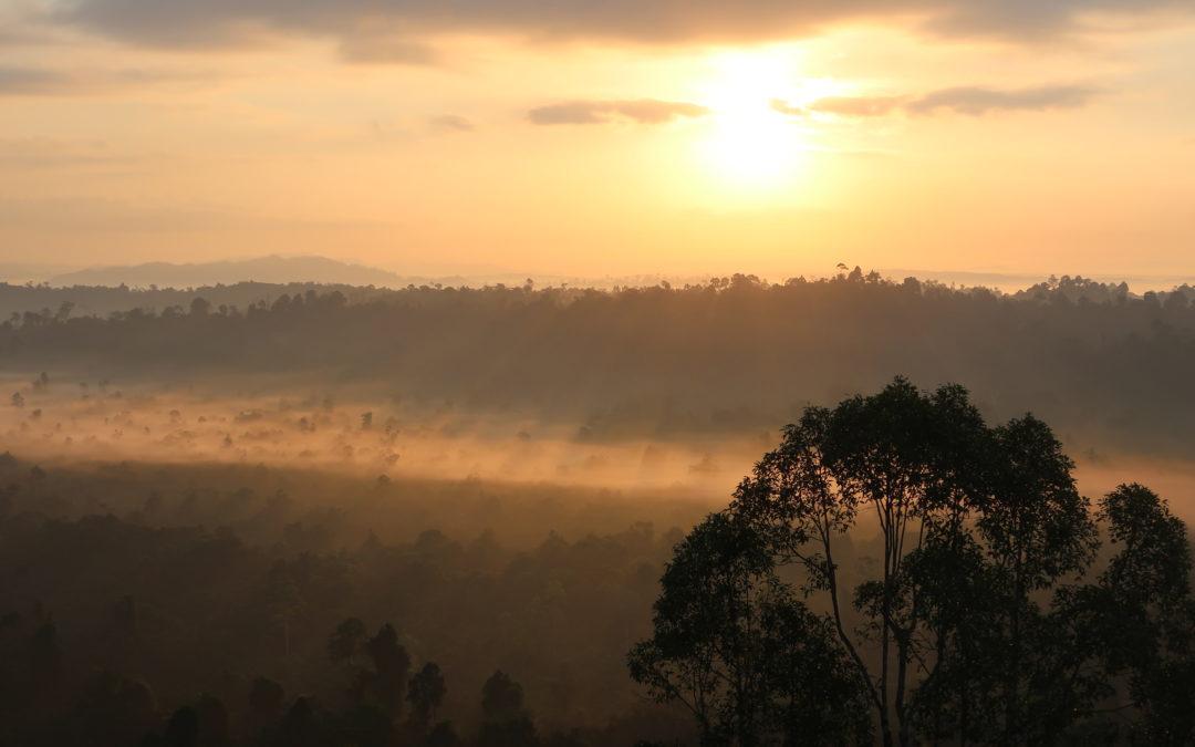 Malaisie : Bornéo, reine de Sabbah